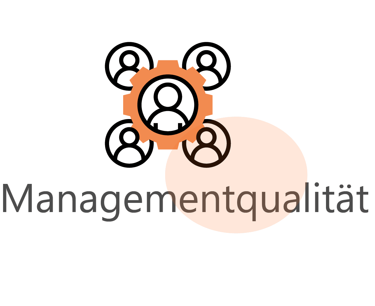 managementqualitat icon